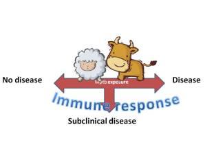 Disease spectrum
